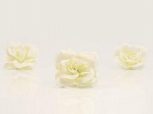 floristikvergleich.de 24 Rosen Autoschmuck Dekoration Hochzeit creme Brautwagen Kutsche Standesamt