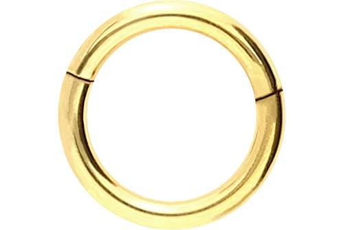 PIERCINGLINE Chirurgenstahl Segmentring Clicker | Piercing ✔ Ring ✔ Septum ✔ Helix ✔ Tragus ✔ | Farben & Größenauswahl