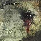 Black Opal