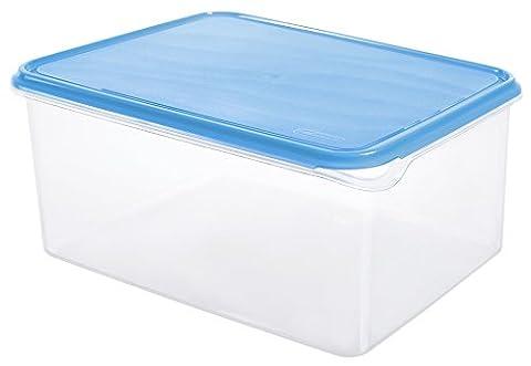 Rotho 1715306644 Frischhaltedose Rondo rechteckig aus Kunststoff PP, BPA-frei, hochwertig, geeignet für Spülmaschine und Gefrierschrank, 8 L, circa 31,5 x 24 x 14,5 cm, transparent / blau