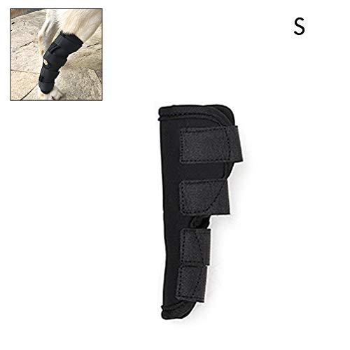 Pet hund bandagen hund bein knie sprunggelenk klammer straps Schutz für kleine hund joint 1 stücke von Bandage Wrap hund medizinische versorgung -