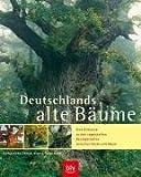 Deutschlands alte Bäume: Eine Bildreise zu den sagenhaften Baumgestalten zwischen Küste und Alpen