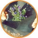 Nutley's 10 x 2 m Weedban 50 Weed Control Fabric - Black