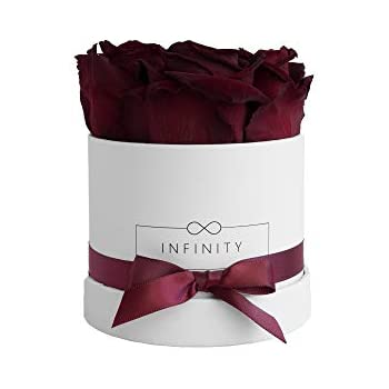 mia milano rosenbox mit 4 infinity rosen flowerbox. Black Bedroom Furniture Sets. Home Design Ideas