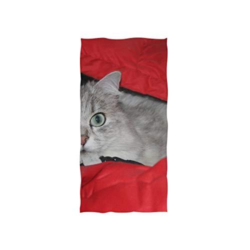 Plosds Kleines Handtuch Perserkatze Chinchilla Katze Silber Chinchilla weiches Handtuch Fingerspitze Handtuch für Baby Badezimmer Dusche Wrap Gym Sport 30 x 15 Zoll Shop Handtücher -