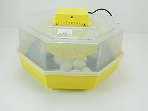 Inkubator/Brutkasten/Brutmaschine/Brutapparat/Brüter/Incubator Campo24 C1 ® - 2