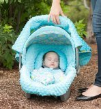carseat-canopy-whole-caboodle-kennedy-by-carseat-canopy