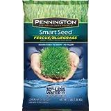 Pennington Seed 100086847 Kentucky Blue ...