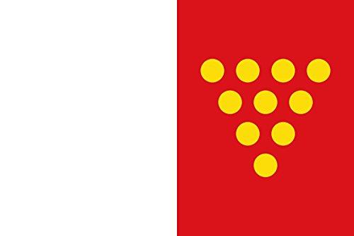 magFlags Bandiera Large Cotanes del Monte Spain | Cotanes del Monte, in Zamora province, Spain | Rectangular de proporciones 2 3, formada por dos franjas verticales iguales 90x150cm