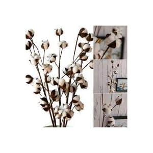 Flores artificiales secas de algodón DIY flores artificiales de simulación de flores artificiales naturales reales…