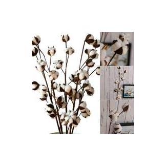 Flores artificiales secas de algodón DIY flores artificiales de simulación de flores artificiales naturales reales flores artificiales para decoración del hogar, bodas, fiestas, oficinas, restaurantes