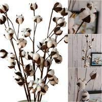 Flores artificiales secas algodón DIY flores artificiales