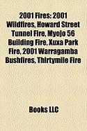 2001-fires-2001-wildfires-howard-street-tunnel-fire-myojo-56-building-fire-xuxa-park-fire-2001-warra