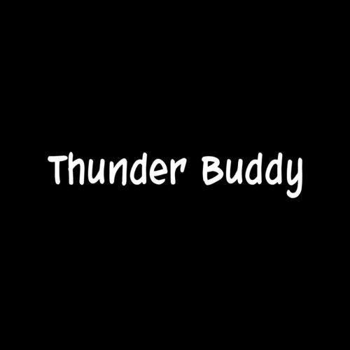 Thunder Buddy Sticker Cute Vinyl car Truck Window Decal Funny Joke Movie Gift - Die Cut Vinyl Decal for Windows, Cars, Trucks, Tool Boxes, laptops, MacBook - virtually Any Hard, Smooth Surface - Surface Thunder