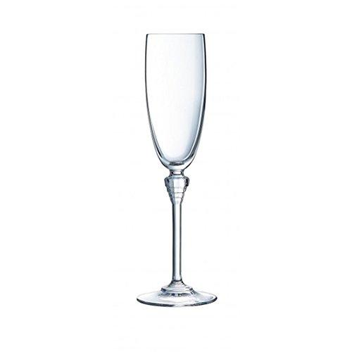 CRISTAL D'ARQUES 7501602 BTE DE 6 Flutes 19 CL Cristallin, Transparent, 23,1 x 15,6 x 24,4 cm