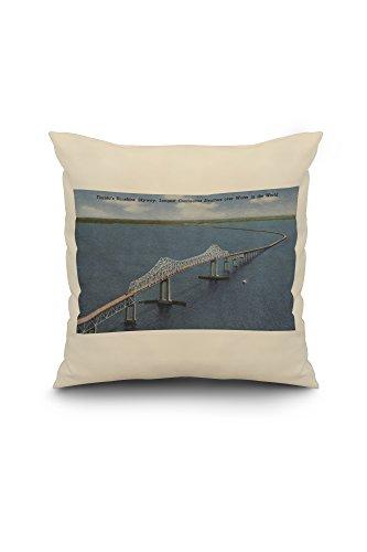 floridas-sunshine-skyway-bridge-20x20-spun-polyester-pillow-case-white-border