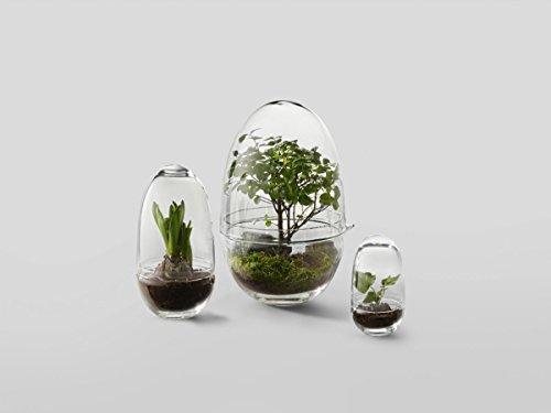 Design House Stockholm – Grow Gewächshaus – S – Caroline Wetterling – Blumentopf – Design