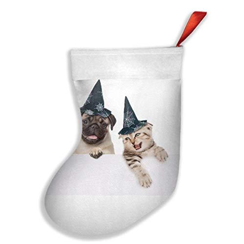 Halloween Einzelhändler - Voxpkrs Halloween Dog Cat Witch Wizard
