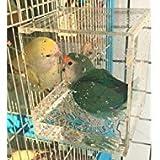 Best Jaulas de pájaros - KINTOR - Bañera de pájaros de acrílico, diseño Review