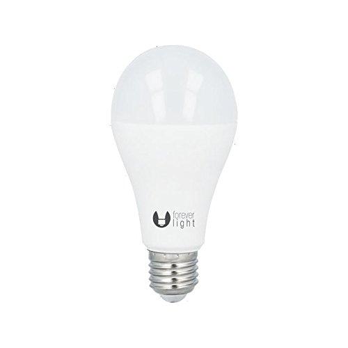 Forever Light Il Miglior Prezzo Di Amazon In Savemoney Es