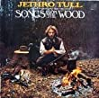 Songs from the Wood [Vinyl LP]