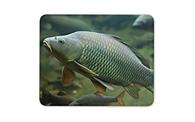 Wild Common Carp Fishing Mouse Mat Pad - Angling Fresh Fun Computer Gift #15753