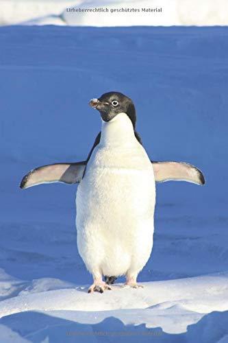 Pinguin Notizbuch: liniertes Notizbuch / Tagebuch mit Pinguin Bild als Motiv - 120 Seiten in Taschenbuchgröße