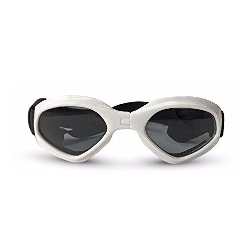 PETCUTE Hund Sonnenbrille Haustier wasserdichte Brille Stilvoll leichte UV-Schutz Sonnenbrille für kleine mittlere Hund