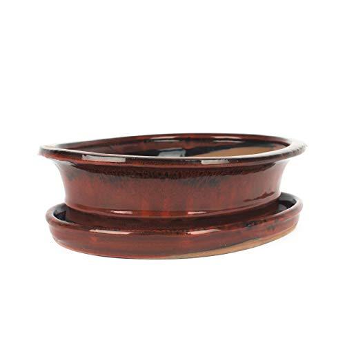 Inter Flowers - Bonsaischale ROT - L: 30cm B:25cm H:8cm mit Untersetzer, Keramik geflammt, Indoor/Outdoor, oval, Unterteller, hochwertig