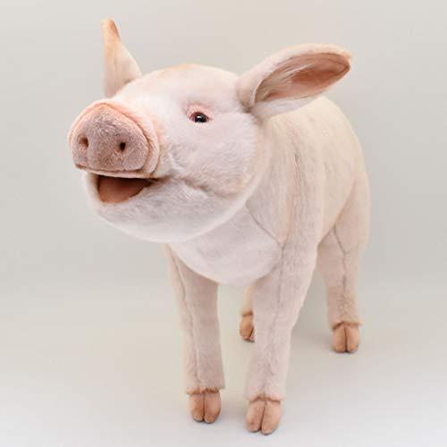 Schweine 63 No.6347