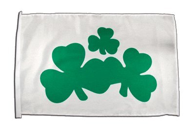 Fahne Flagge Irland Shamrock 30 x45 cm (Shamrock Fußball)