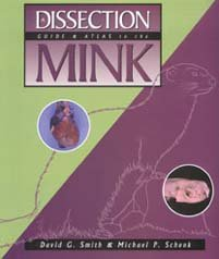A Dissection Guide and Atlas to the Mink