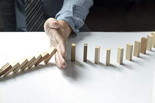 Como dirigir proyectos exitosos: Una solución práctica basada en la gestión de riesgo por Adrian Victor Anex E. M.