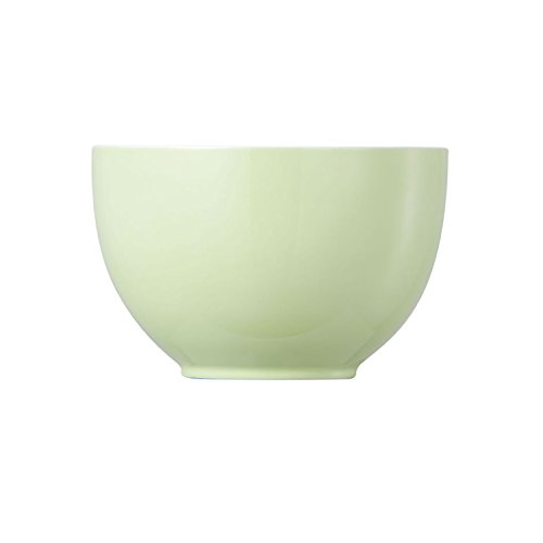 Rosenthal Thomas - Sunny Day Müslischale - Dessertschale - Schale - Pastel Green - Pastellgrün 0,45 l -
