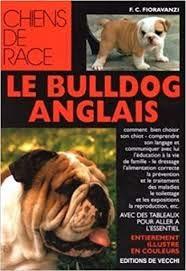 Le bulldog anglais