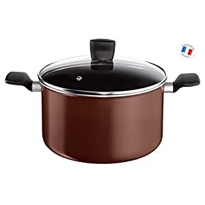 Tefal B3006902 Extra Brownie Cooking Pot with Lid, Aluminium, 12.2 L, 30 cm