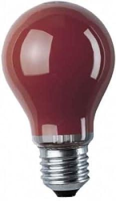 Glühlampe 25W rot Sockel E27 (2er Set) von depot8 bei Lampenhans.de