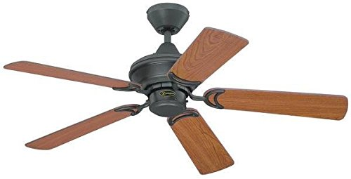 Westinghouse Lighting NEVADA Ceiling Fan, Metal, Iron