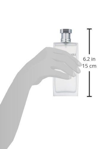 Hanae Mori Homme Eau de Toilette Vapo 100 ml