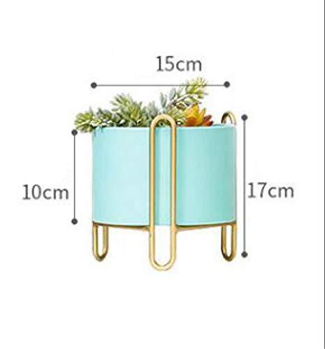 jardinieres exterieur – Asnails 3 Paquet Porte-Plante en Pot ...