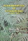 Pteridophytes of Uttaranchal: A check-list