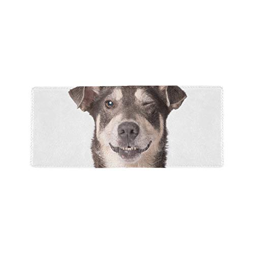 Funny Cute Adorable Dog Puppy Cool Lether Business Card Coin Id Pouches Holder Travel Clutch Purse Money Clip Bifold Wallet Case for Girls Men and Women Front Pocket Checkbook - Mongrel Pack