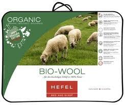 Hefel Bio Wool Organic Cotton Ganzjahresbettdecke 135x200 cm