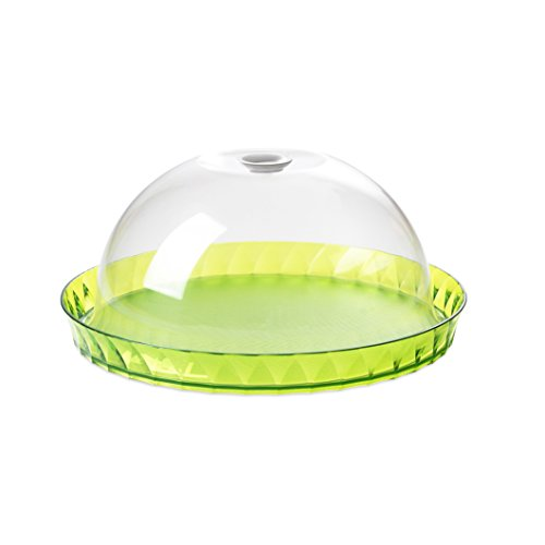 Récipient de gâteau 36 cm avec couvercle en acrylique transparent Vert