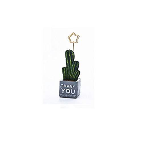 Xuba Mini Kaktus Foto Kartenhalter Aus Kunstharz Thanko