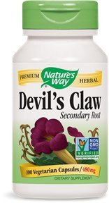 natures-way-devils-claw-secondary-root-480-mg-100-vegetarian-capsules