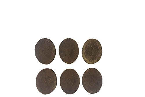 Cosmic Vibrations 5-Piece Cow Dung Cake Set