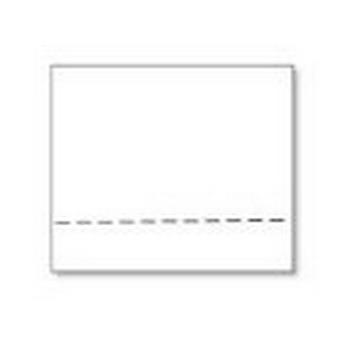 Seiko Instruments SLP-RTL self-adhesive label - self-adhesive labels (White)