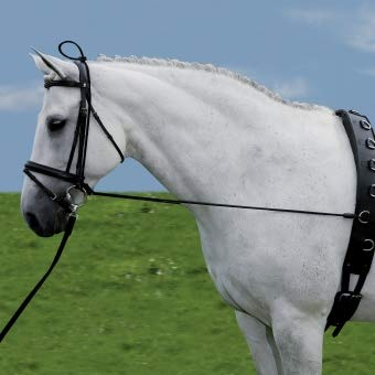 Waldhausen Halsverlängerer Elastic, schwarz, Pony, schwarz, Pony