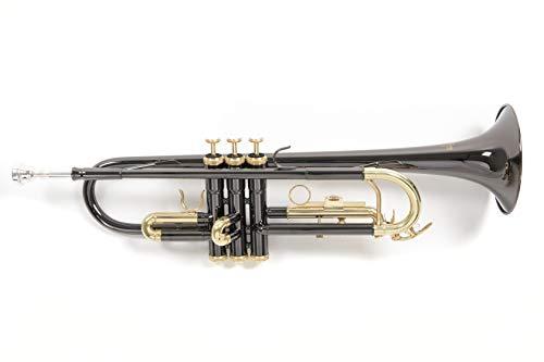 Roy Benson Rb701052 Tromba in Sib Tr-101K, Astuccio Rettangolare, Antracite